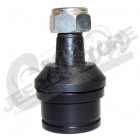 Ball Joint (Lower)
